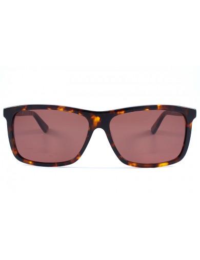 Gafa de sol 1075 - Gafa de sol de pasta de color havanna con lentes marrones