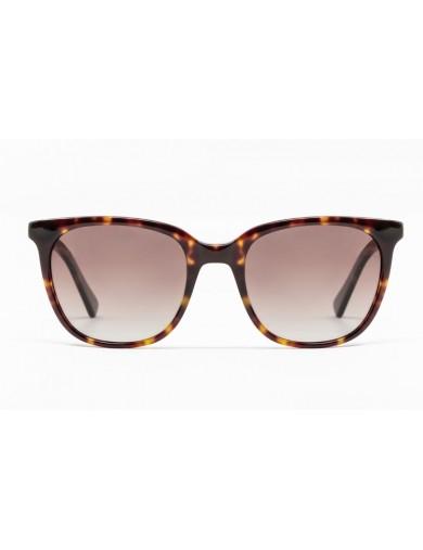 Gafa de sol Percy - Gafa de pasta de color havana y lentes marrones degradadas - Frontal